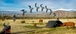BMX biking red bull