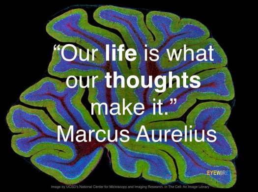Our life is what our thoughts make it Marcus Aurelius