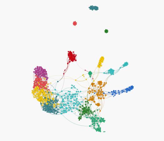 DTI Neurotech network graph